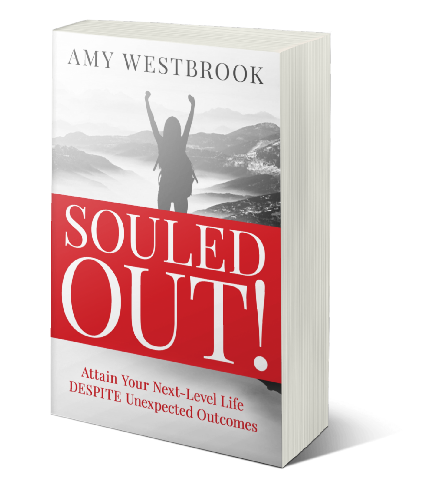 souled out book cover